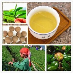 10 Pcs Chinese <font><b>Green</b></font> <font><b>Tea</b></f