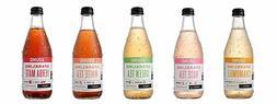 SOUND Sparkling Organic Tea - All Flavor Sampler Pack 12 Oun