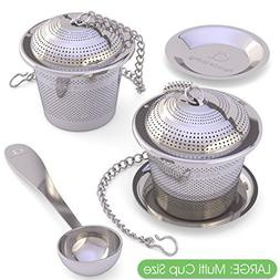 Apace Loose Leaf Tea Infuser  with Tea Scoop and Drip Tray -